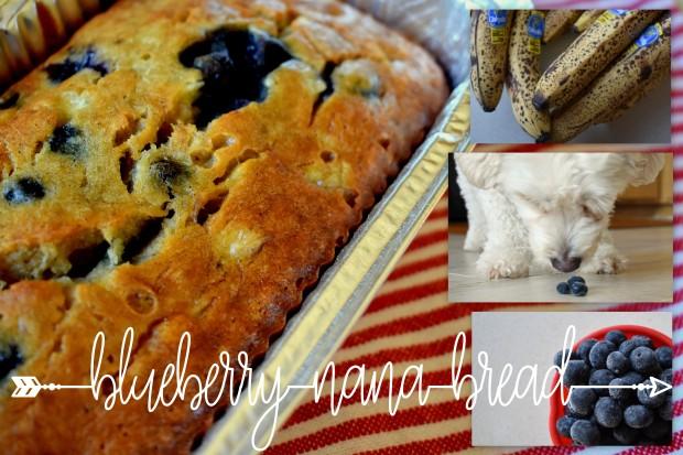 Blueberry Nana Bread